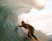 surf nazis must die parental guide